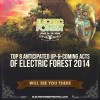 8 Up-And-Coming Acts You Can't Miss At Electric Forest 2014