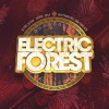 EFOREST 2015: SOLD OUT!