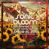 FESTY NEWS: The 5 A's Of Sonic Bloom 2015: Art, Artists, Activities, Ambience, & Awareness